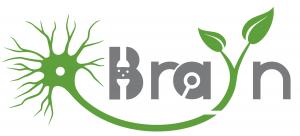 Logo_BraYn-Conference